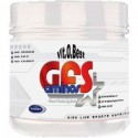 GFS Aminos (500 gr.)