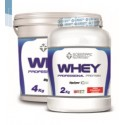Whey Professional Protein (4 Kg) Scientiffic Nutricion