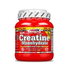 Creatine (500gr + 250gr) AMIX NUTRITION